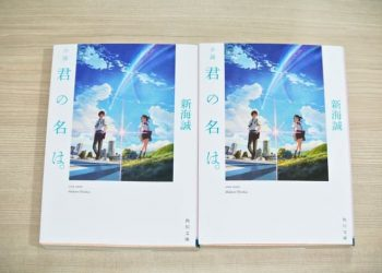 Novel Kimi no Na Wa